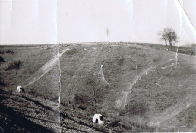 1972 (2)